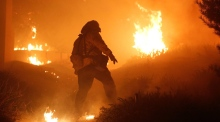Why are California's fires so bad this year?
