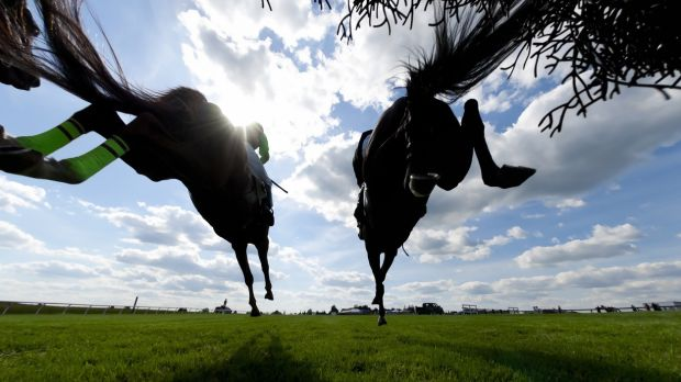 Get ready for the Cheltenham Festival and the Grand National by booking early