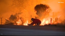 Man stops car to rescue rabbit from California wildfires