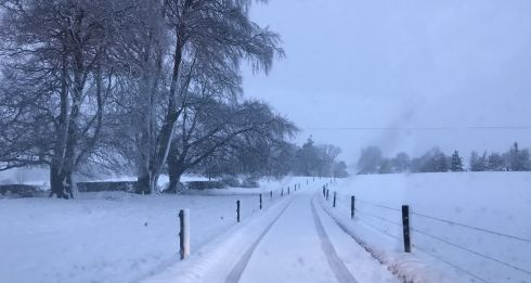 Heavy snowfall in Westmeath on Sunday morning. Photograph: David Clarke/Twitter