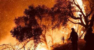 Firefighters tackle flames as they advance on homes  in Carpinteria, California. Photograph: Reuters