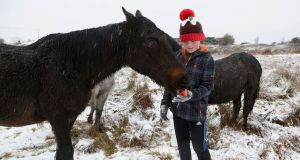 Sean Keane feeding ponies in the snow in the Rahoon area in Galway on Sunday. Photograph: Joe O'Shaughnessy  Sean Keane feeding ponies in the snow in the Rahoon area in Galway on Sunday. Photograph: Joe O'Shaughnessy. 10/12/2017
