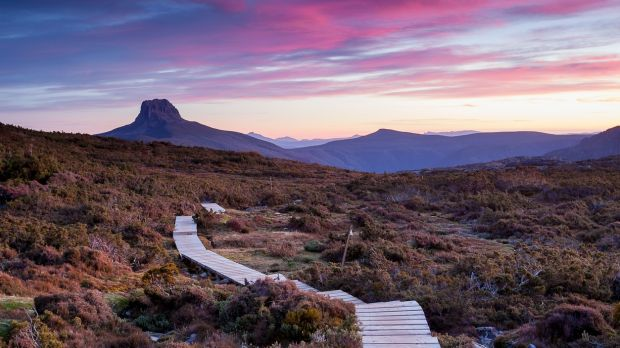The Overland Track in the Cradle Mountain-Lake St Clair National Park, Tasmania. Photograph: iStock/Getty Images