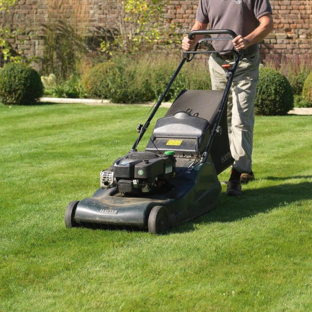 Make sure to put the lawnmower blades at their highest setting . Photograph Richard Johnston