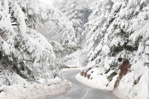 WHITE CHRISTMAS: Snow on the Glencullen Road in Co Dublin. Photograph: Stephen Collins/Collins Photos