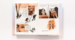 'The Best We Could Do': a stunning graphic memoir in which Thi Bui details her mother's journey from Vietnam to the US.