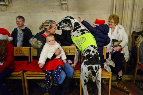 BOBBY'S GREAT: Catherine Joyce McIvor with her children Eabha and Cathal, and also  their therapy dog Bobby, a Great Dane, at a  Christmas carol service with Peata Therapy  Dogs at Christ Church Cathedral. Photograph: Cyril Byrne/The Irish Times