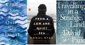 From a Low and Quiet Sea by Donal Ryan; Travelling in a Strange Land by David Park
