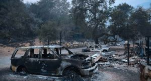 Fire ravaged vehicles  parked in front of burnt out homes off Highway 33 north of Ojai, California. Photograph: Getty