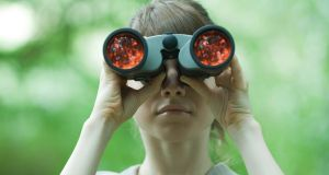 Starter binocular options at about €120 can greatly enhance your observations. Photograph: ZenShui/Odilon Dimier/Getty Images