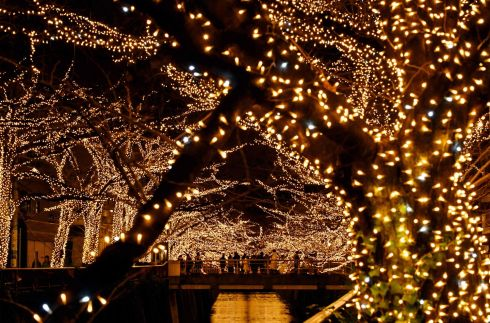 LIGHT FANTASTIC: Bystanders admire Christmas illuminations along the Meguro River in Tokyo. Photograph: Getty Images