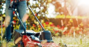 The international statistic was 69, the number of US citizens killed on average in lawnmower accidents each year. Photogrpah: iStock