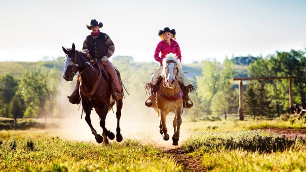 Enjoy a stay on a working cattle ranch in Texas