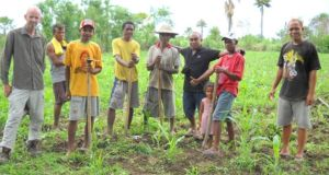 Martin Browne with farmers weeding their maize seed production area in East Timor.