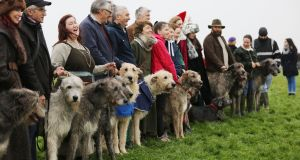 Members of the Irish Wolfhound Club of Ireland  at Newgrange for the Winter Solstice. Photograph: Alan Betson/The Irish Times