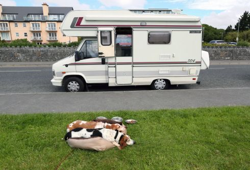 Let sleeping dogs lie ... on the Salthill promenade in Galway during balmy weather in July.  Photograph: Joe O'Shaughnessy