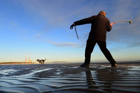 Adrian Marshall, from Booterstown with his dog Willow on Sandymount Strand, Dublin in January. Photograph: Dara Mac Donaill / The Irish Times