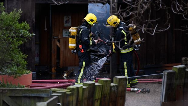Firefighters spray each other down before entering an area to survey the damage after a fire destroyed a number of buildings at London Zoo on December 23rd, 2017. Photograph: Leon Neal/Getty Images