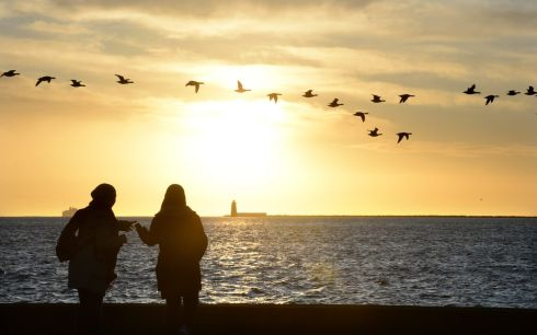 RISE AND SHINE: Early morning sunrise at the Coast Road, Clontarf, Dublin. Photograph: Dara Mac Dónaill/The Irish Times