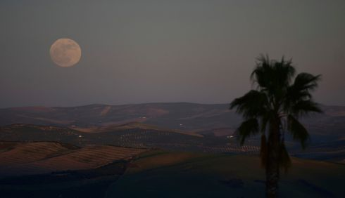 The first supermoon of 2018, seen from the countryside in Montemayor near of Cordoba, southern Spain. Photograph: Manu Fernandez / AP