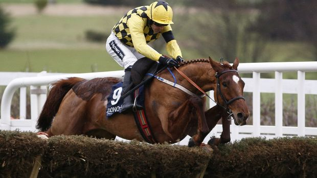 Forget Faugheen or Buveur d'Air, Melon will win the Champion Hurdle!