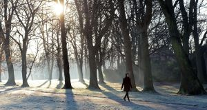 The cold snap is here to stay until the middle of next week. Photograph: Eric Luke/The Irish Times