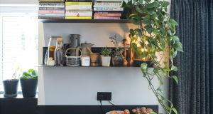 Floating powder-coated steel shelves hold house plants supplied by  Best Buds Belfast