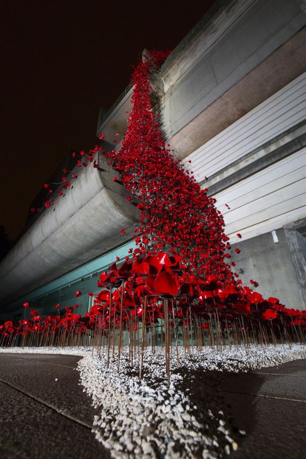 Weeping Window: Paul Cummins had freed the poppy from being a thing that Stood For Something to be contested or embraced or disgraced. Photograph: Darren Kidd/Press Eye
