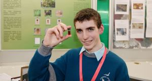 Simon Meehan, from Coláiste Choilm, Co Cork, who has won the top prize at this year's BT Young Scientist & Technology Exhibition. Photograph: Alan Betson/The Irish Times.