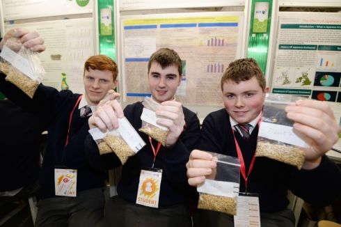 Winner of the Runners up Group at the 2018 BT Young Scientist & Technology Exhibition at the RDS Andrew Heffernan, Darragh Twomey, Neil O'Leary from Colaiste Treasa Kanturk with their project Feeding 9.6 billion people by 2050.- The effects of Pseudomonas Fluorescens L321 on enhancing barley crop yield. Photograph: Alan Betson / The Irish Times