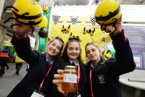 Megan Freeney, Sarah Hennessy and Eah O'Gorman from St Mary's Secondary School, Newport, Co Tipperary, with their project on the effect of different materials on bee health. Photograph: Alan Betson/The Irish Times