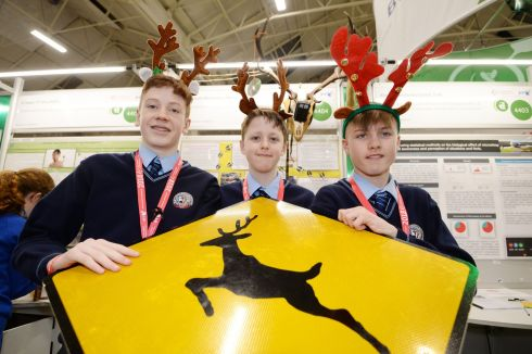 Ethan O'Neill, Colm Looney and Darragh Flemming from Colaiste Bhreanainn, Kerry with their project Using Science to reduce collisions between deer and vehicles  Photograph: Alan Betson / The Irish Times