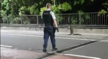 Wallaby caught on the hop by police on Sydney Harbour Bridge
