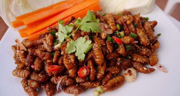 A food blog for those bugged by new year diet books silkworm larb salad anyone forumfinder Images