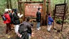 Visitors read signs posted in the dense woods of the Aokigahara forest in Japan.YouTube says it has removed blogger Logan Paul's channels from Google Preferred. Photograph: Atsushi Tsukada/AP Photo