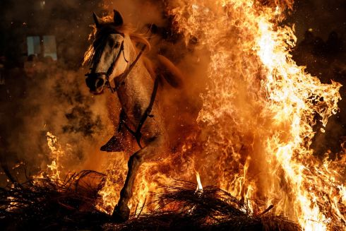 FEAT OF FLAMES A man rides a horse through fire during the Las Luminarias festival, held on the eve of St Anthony's Day in the Spanish village of San Bartolomé de Pinares, near Madrid. Anthony is the patron saint of animals, and riding horses through the flames is believed to purify and protect them. Photograph: Juan Medina/Reuters