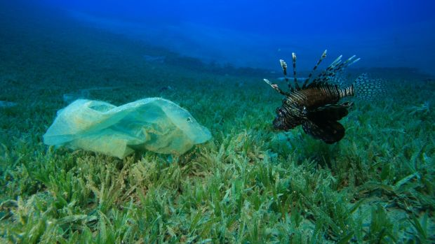 The plastic bag charge was introduced in 2002, initially at a charge of 15 cent per bag