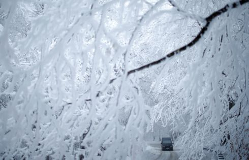 STARK SCENE: A car behind snow-covered trees outside Tbilisi, Georgia. Photograph: David Mdzinarishvili/Reuters