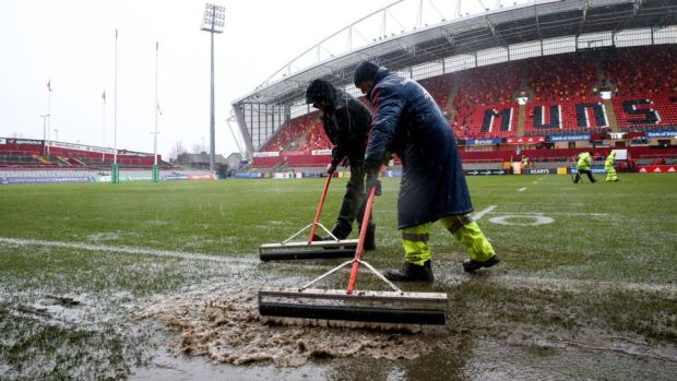 Thomond Park: the groundsmen should be given the freedom of Limerick. Photograph: Gary Carr/Inpho