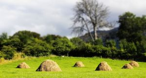Making hay to pay the rent on the 'priest's field'