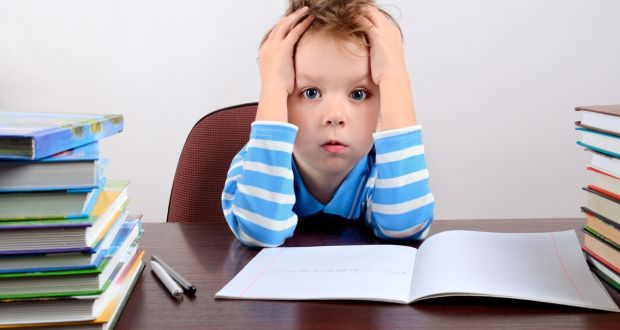 homework should be reduced