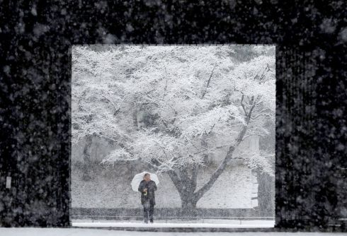 SINGIN' IN THE SNOW: A man holding an umbrella makes his way in the heavy snow at the Imperial Palace in Tokyo, Japan. Photograph: Kim Kyung-Hoon/Reuters