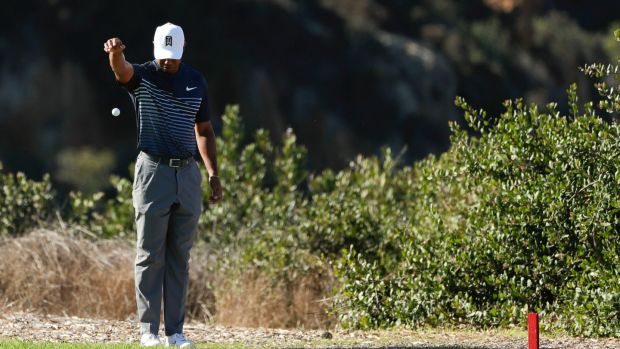 Woods takes a drop on the 13th hole after driving into the hazard. Photo: Gregory Bull/AP Photo