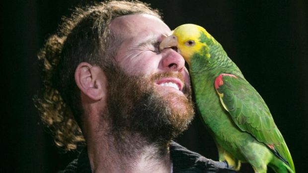 Escobar the parrot and his owner, Kevin