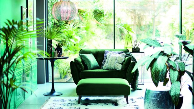 Invest in a statement chair and an exotic plant or two