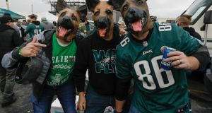Philadelphia Eagles fans wear their underdog heads before the start off the NFC Championship game between the Minnesota Vikings and the Philadelphia Eagles. Photograph: Jason Szenes/EPA