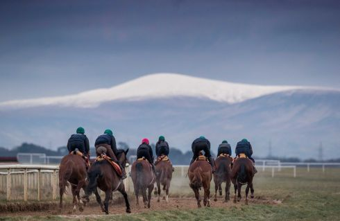 IN TRAINING: Johnny Murtagh horses in front of the Wicklow Mountains at a Horse Racing Ireland Ownership morning at the Curragh Training Grounds. Photograph: Morgan Treacy/Inpho