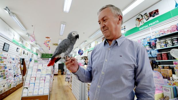 Paul Barr with his parrot Pixie at Northside Photo Centre in Northside Shopping Centre, Coolock. Photograph: Alan Betson / The Irish Times