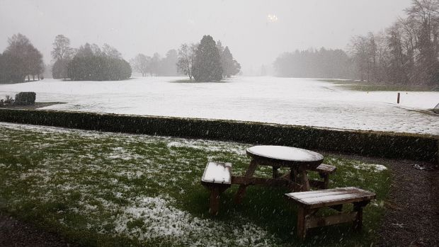 Snow falling at Tipperary Golf Club on Sunday. Photograph: Paula Hickey