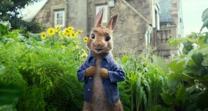 Peter Rabbit in a scene from  the new 'Peter Rabbit' film. Photograph: Columbia Pictures/Sony via AP